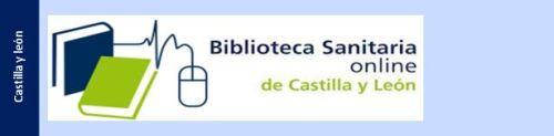 Castilla_leon1