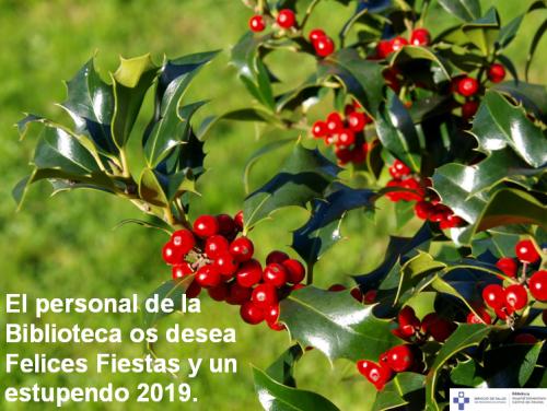 felicitacion navidad.PNG